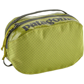 Patagonia Black Hole Cube Toiletry Bag Small Folios Green